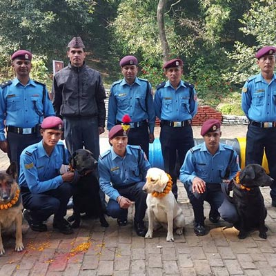 Happy Dog Day, a Tihar festival. Giving a special thanks to the Search and Rescue dogs of the Nepal Police involved in saving lives after the earthquake. 'Thulo shaybash ani dherai dhanyabad'. Rich in culture as always.